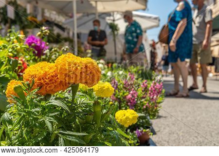 Close-up Of An Orange Flowering Plant, Tagetes Erecta, In A Street Plant Market With Out-of-focus Pe