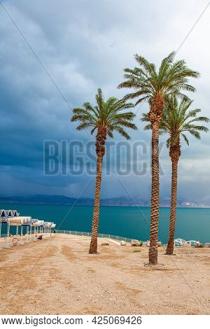 Palm trees bend in strong wind. The Dead Sea. Israel. Picturesque beach with bright sunshades. Gloomy sky with dark thunderclouds. The magnificent exotic resort