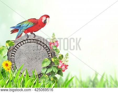 Horizontal banner with tropical plants, lianas, round stone and Ara parrot. Exotical border with plant of jungle, Ara macao and copy space. Jungle stone sign on nature background. Mock up template
