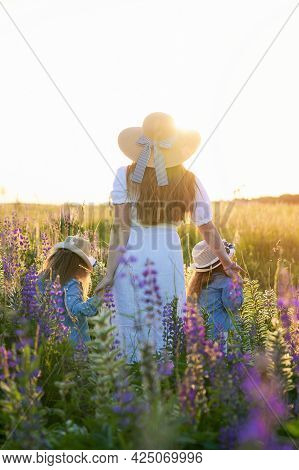 Family Walk With Children To Nature. Mom And Her Twin Sisters In Straw Hats Are Walking Through A Fi