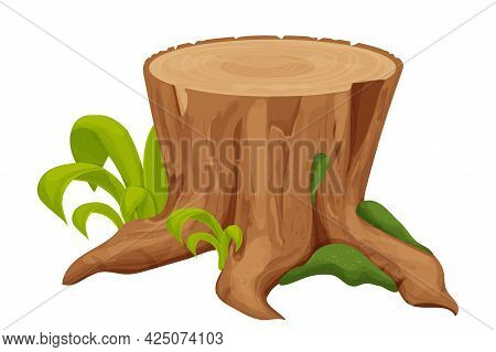Tree Stump, Old Trunk With Grass And Moss In Cartoon Style Isolated On White Background. Forest Deco