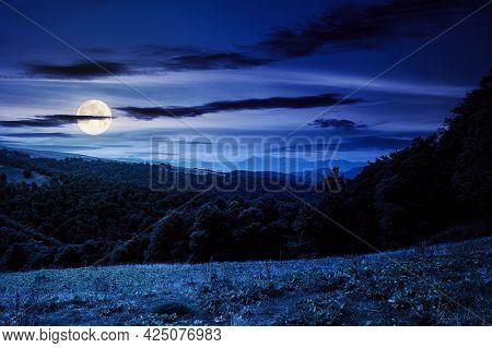 Countryside Landscape Of Carpathians At Night. Green Meadow Under Dark Sky In Full Moon Light. Trees