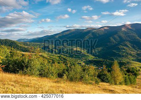 Rural Landscape In Evening Light. Beautiful Countryside Scenery Of Carpathian Mountains. Trees, Fiel