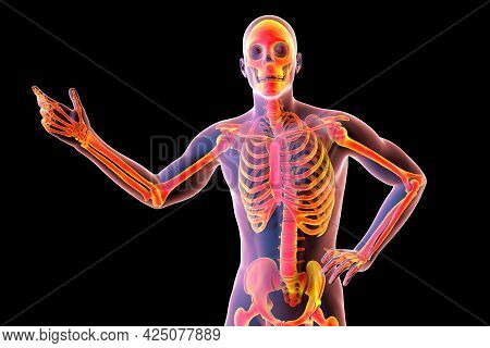 Human Body With Skeleton, 3D Illustration