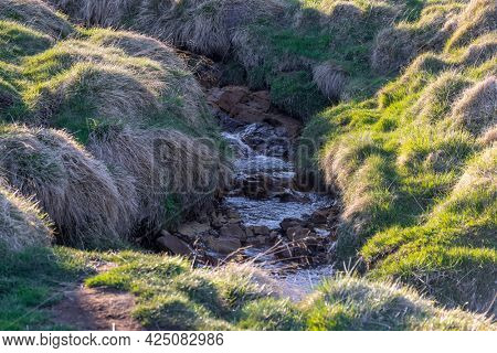 Small creek through tundra in rural Iceland