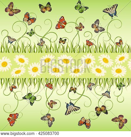 Pattern With Daisies And Colorful Butterflies.white Daisies And Multicolored Butterflies On A Colore