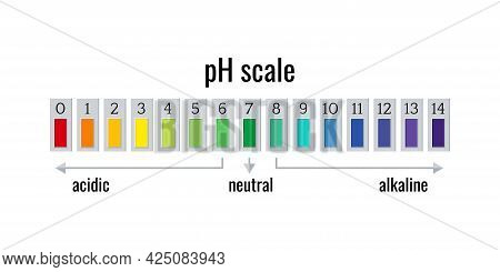 Ph Scale Chart Meter For Acid And Alkaline Solutions Isolated On White Background.