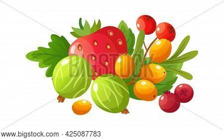 Cartoon Ripe Berries. Gooseberry, Red Strawberry And Fresh Cranberry. Rowan Berry, Isolated Raw Frui