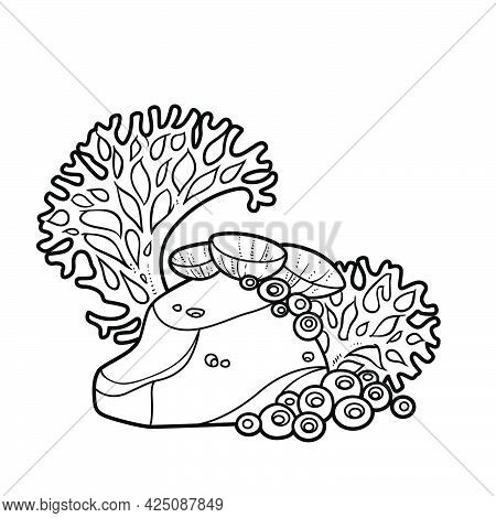 Big Coral And Anemones On Small Sandstone Coloring Book Linear Drawing Isolated On White Background