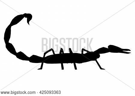 Scorpion Silhouette Isolated On White Background. Side View. Vector Illustration