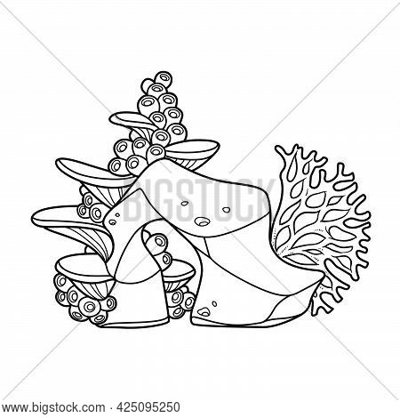 Coral Polyps And Anemones On Sandstone For Coloring Book Linear Drawing Isolated On White Background