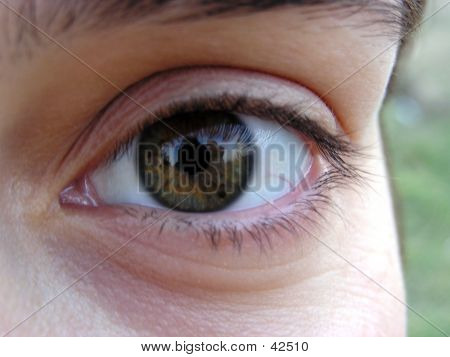 Close Up Of A Girl's Eye