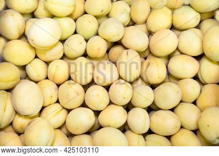 Apricot Fruits (latin Prúnus Armeníaca) Are Yellow With A Delicate Skin. Fruits Nuts Vegetables Berr