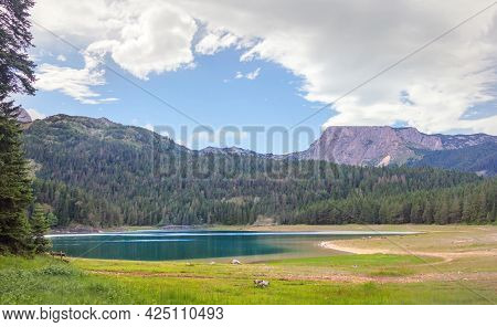 Black Lake In Durmitor National Park. Montenegro.