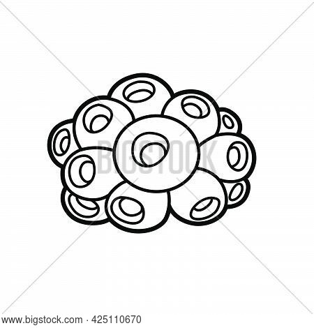 Sea Round Sponge Object Coloring Book Linear Drawing Isolated On White Background