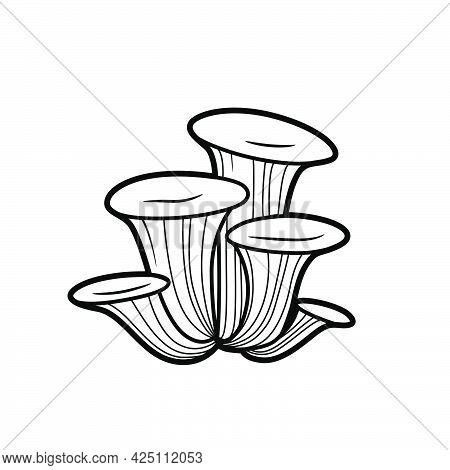 Sponge Coloring Book Linear Drawing Isolated On White Background