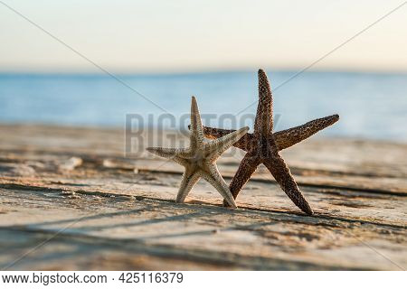 Panorama Of Summer Beach With Starfish And Blue Sea Background. Landscape Of Tropical Summer. Summer