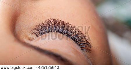 Beautiful young woman on treatment of Eyelash Extension. Lashes. Eyes with Long Eyelashes.