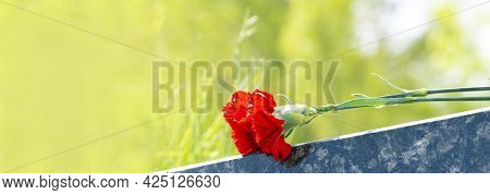 Headstone With A Red Carnation. A Red Carnation Was Left On A Gravestone In A Cemetery For A Man Who