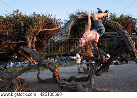 Happy Boy Enjoying Summer In A Park. Cute Little Kid Boy Enjoying Climbing On Tree. Cute Child Learn