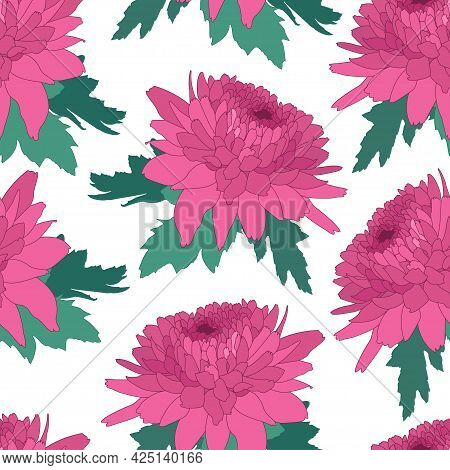 Seamless Decorative Pattern With Pink Chrysanthemum. Crown Daisy Repeated Background. Vector