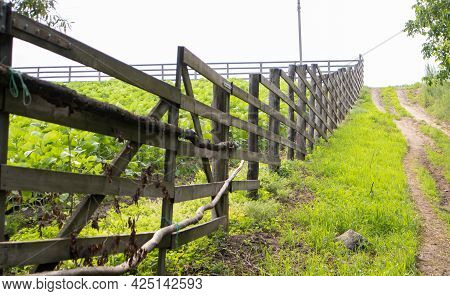 Authentic Wooden Fence In The Village. Handmade Wooden Fence Made Of Boards. Old Fence, Rural Landsc