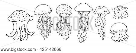 Vector Set Of Jellyfish. Hand-drawn Jellyfish In A Sketch Style Of Different Shapes With Long And Sh