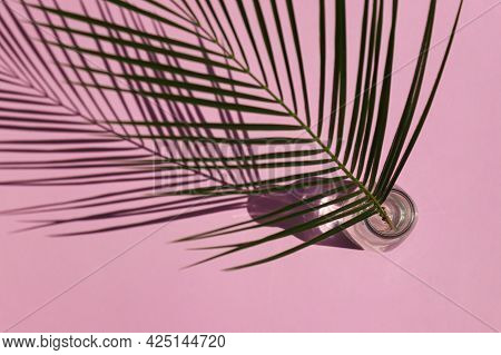Summer Minimalistic Flat Lay. Palm Leaf In Vase With Hard Light And Deep Shadows Top View On Pink Ba