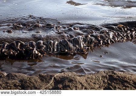Oil Pollution Near The Sea Coast.ecology. Environmental Pollution.