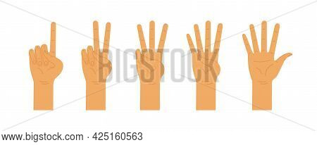 Hands Counting From One To Five. Counting Hands, Hand Gestures. Vector Flat Illustration Isolated On