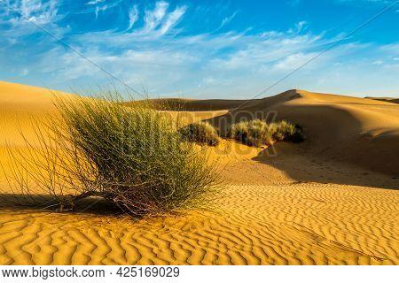 Sam Sand dunes of Thar Desert under beautiful sky. Rajasthan, India