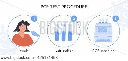 Covid-19 Test Procedure Infographic. A Doctor Or Nurse In Latex Gloves Takes Nasal Swab Test. Woman