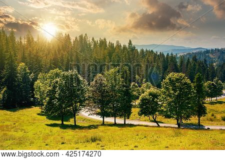 Mountainous Countryside Landscape At Sunset. Trees On The Meadow Along The Road. Coniferous Forest O