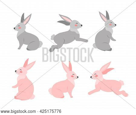 Set Of Rabbits In Different Poses Flat Cartoon Style. Bunny On A White Background. Vector Illustrati