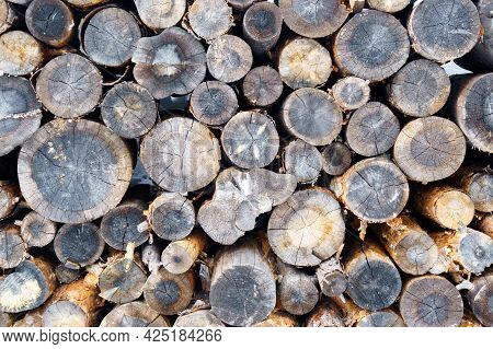 Wooden Log Wooden Background. Fuel. Harvesting Firewood For The Winter.