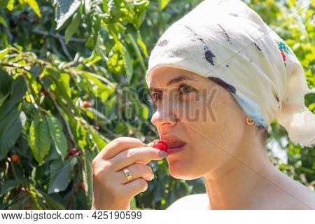 A Beautiful Young Woman In A Garden Outside The City Picks And Bites A Cherry Near A Tree On A Sunny
