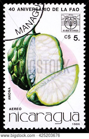 Nicaragua - Circa 1986: A Postage Stamp From Nicaragua Showing Fruit Anona