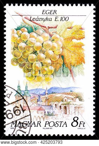 Hungary - Circa 1990: A Postage Stamp From Hungary Showing Sort Of Grape Leanyka In Eger Region