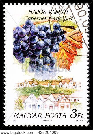 Hungary - Circa 1990: A Postage Stamp From Hungary Showing Sort Of Grape Cabernet Franc In Waschkut