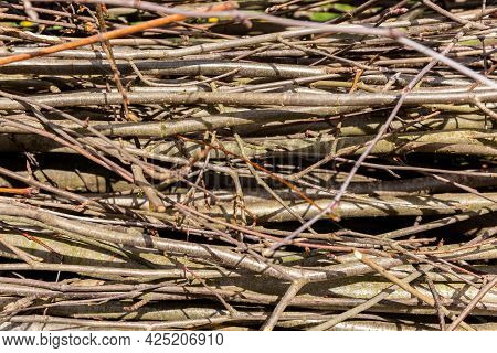Branches And Twigs. Texture. Natural Background. A Fence Made Of Dry Tree Branches. Country Style. .