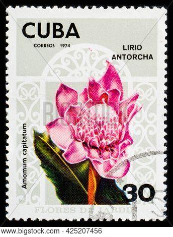 Cuba - Circa 1974: A Postage Stamp From Cuba Showing Garden Flowers Lirio Antorcha