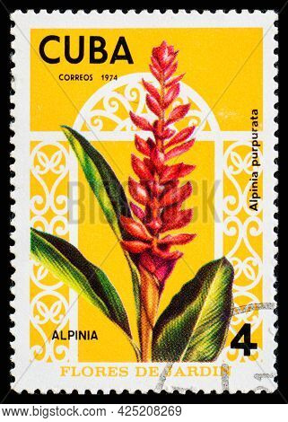 Cuba - Circa 1974: A Postage Stamp From Cuba Showing Garden Flowers Alpina