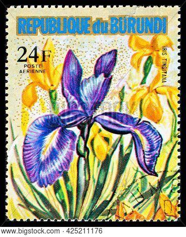 Burundi - Circa 1973: A Postage Stamp From Burundi Showing Garden Flowers Iris Tingitana