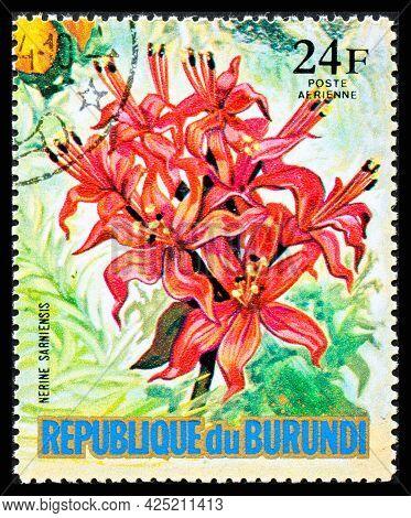 Burundi - Circa 1973: A Postage Stamp From Burundi Showing Garden Flowers Nerine Sarniensis