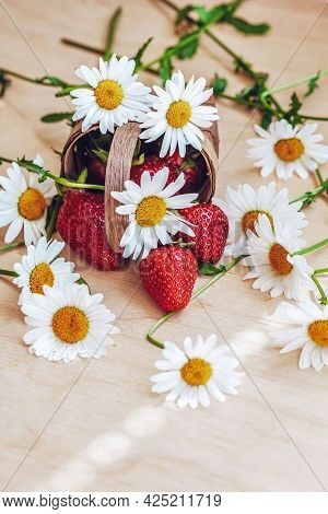 Wicker Basket With Strawberries And Chamomile Flowers. Top View. Summer Concept