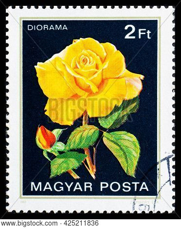 Hungary - Circa 1982: A Postage Stamp From Hungary Showing Flowers Diorama