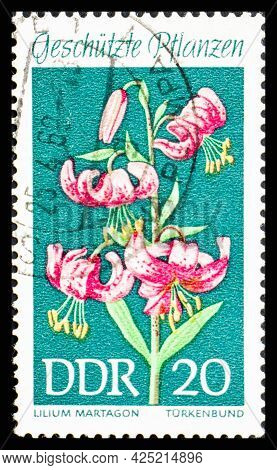 Russia, Ussr - Circa 1969: A Postage Stamp From Ussr Showing Flowers Lilium Martagon