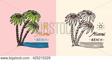 Tropical Green Palm Emblem. Surfing Sign. Summer Surf. Miami Beach. Vintage Engraved Emblem Hand Dra