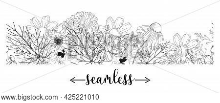 Seamless Border With Medicinal Herbs. Vector Template. Wild Medicinal Plants. Retro Flowers. Hand Dr