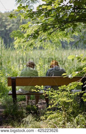 Elderly couple outdoors in summer. Happy elderly couple sitting on a bench, talking. Husband and wife of old age in nature.